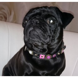 French Bulldog Collar - Rosalie from Germany Showing her Pink Bling One