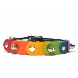 Rainbow Cat Collar with the Freedom and Liberty Colors