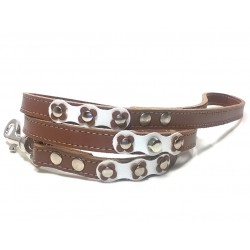 Beautiful and Unique Flower Power Leather Dog Lead