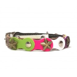 Fancy Happy Studded Brown Cat Collar with Green Purple and Pink