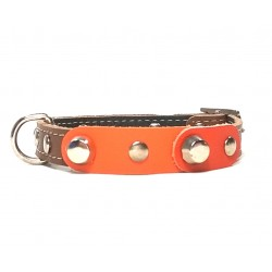 Small Dog Chihuahua Collar with Fancy Orange Leather Pieces and Rivets