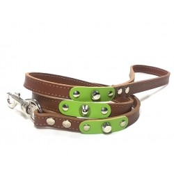 Dog Lead with Fancy Green Leather Pieces and Rivets