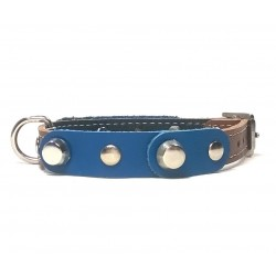 Small Dog Chihuahua Collar with Fancy Blue Leather Pieces and Rivets