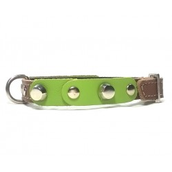 Small Dog Chihuahua Collar with Fancy Green Leather Pieces and Rivets