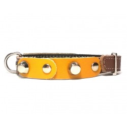 Small Dog Chihuahua Collar with Fancy Yellow Leather Pieces and Rivets