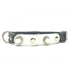 Small Dog Chihuahua Collar with Fancy White Leather Pieces and Rivets