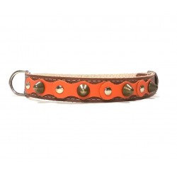 Brown Leather Dog Collar with Spikes Simple but Cool Design