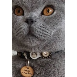 Cat Chaplin showing her Designer Cat Collar with Wooden Cat Tag