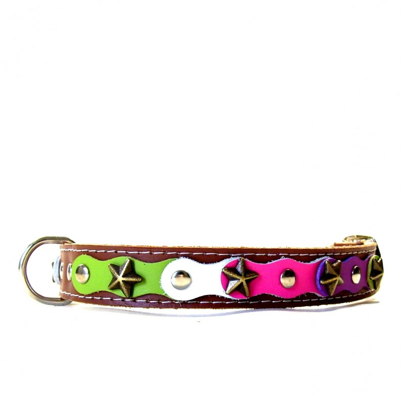 Fancy Happy Studded Brown Dog Collar With Green Purple And