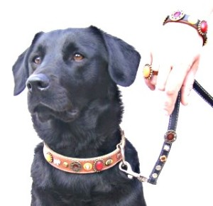 Einzigartiges Design für Hunde, Katzen und Ihre Besitzer! Einzigartiges Design für Hunde, Katzen und Ihre Besitzer! | Passende Leinen und Stylische Armbänder | Handmade in Spain | Superpipapo: In Style with Your Pet!