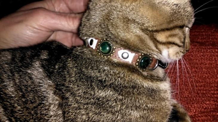 Katzen-halsband Modern Art Luxus mit robusten schwarzen weißen Pins - Super Einzigartige Handgemachte Designs für Ihre Katze mit Sicherheitsverschluss!