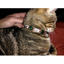 Chic and Trendy Leather Cat Collar