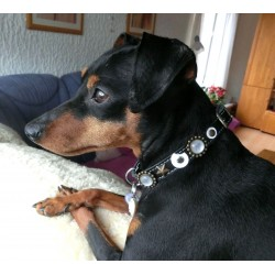 This Unique Dog Collar with stones and moon Formed Leather patches is very striking