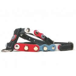 Red White Blue Exclusive Black Leather Dog Harness with silver shiny Studs