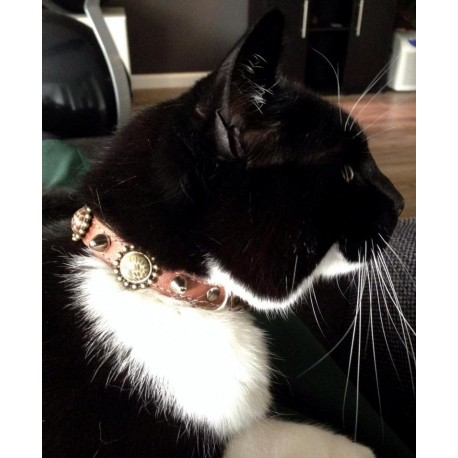 Dutch Debby´s Cat with her Pretty Leopard Design Cat Collar