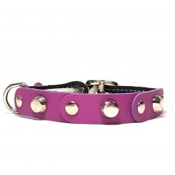 Fancy Leather Cat Collar with purple Leather pieces and Studs