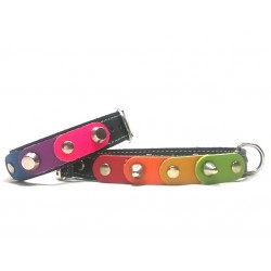 Unique and Original Collar for Chihuahuas and small Dogs and Matching Bracelet with the freedom rainbow colors