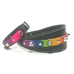 Unique Rainbow Greyhound-Collar and Matching Bracelet with the Freedom Rainbow Colors