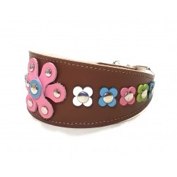 Trendy Leather Greyhound Collar with Pastel Colour Flowers