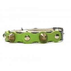 Safety Cat Collar Simple but Cool Design of Green Black Leather with Spikes