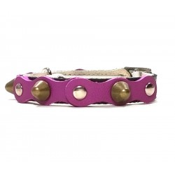 Safety Cat Collar Simple but Cool Design of Purple Black Leather with Spikes