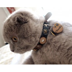 Chucki shows his original Superpipapo cat collar and wooden cat tag