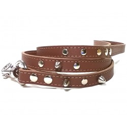 Brown Leather Dog Lead with Spikes Simple but Cool Design