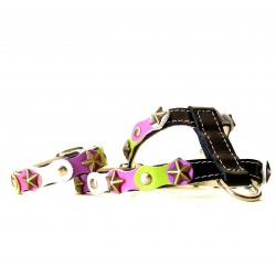 Fancy Happy Studded Black Harness and Matching Bracelet with green purple and pink colors
